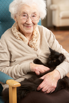 pets benefit the elderly