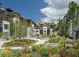 merrill-gardens-at-the-university-courtyard-two