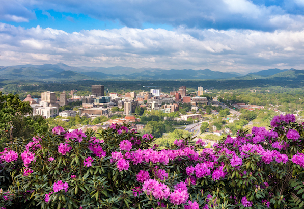 Downtown Asheville skyline flowers in spring