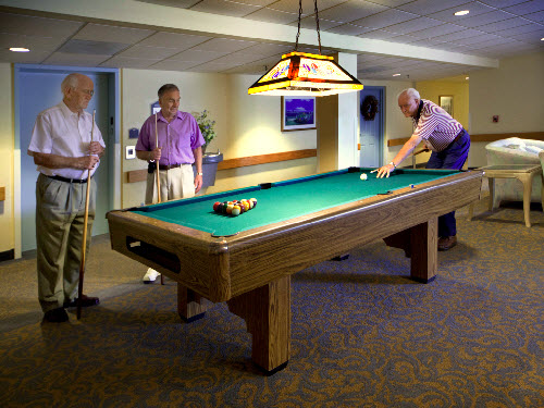 Coral Oaks - Palm Harbor, FL - Billiards Table