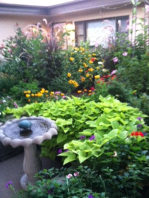 Courtyard of Loveland - Loveland, CO