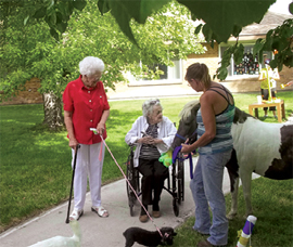 Devonshire Acres - Sterling, CO - Pet Therapy