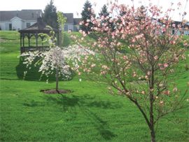 Cumberland Crossings Retirement Community - Carlisle, PA - Community Grounds