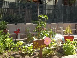 Vista Village, CA - Community Garden