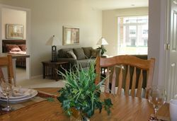 Village at the Falls - Menomonee Falls, WI - Apartment
