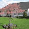 Cumberland Crossings Retirement Community