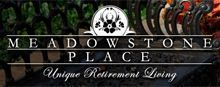 Meadowstone Place - Houston, Texas - Logo