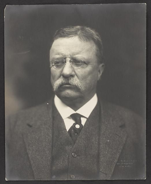 Theodore Roosevelt Jr. - Library of Congress - 3f06209r