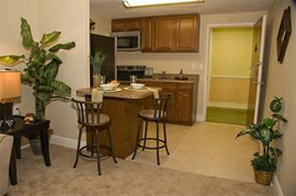 Sun Towers Retirement Community - Sun City Center, FL - Apartment