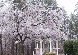 Victorian Villa Personal Care Home - Dallastown, PA - Gazebo