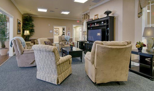 Willow Springs - Spring Hill, TN - Entertainment Room